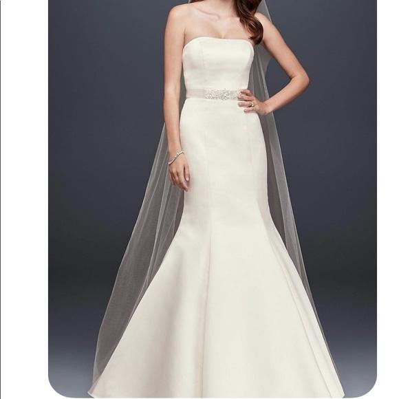 David's Bridal Dresses & Skirts - BRAND NEW Davids Bridal Gown WG9871